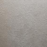 瑞吉欧艺术涂料-罗马系列