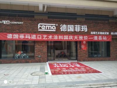 菲玛艺术漆湖南常德澧县专卖店