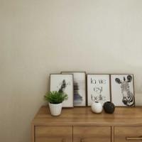 美轮美奂艺术涂料-珍珠水漆